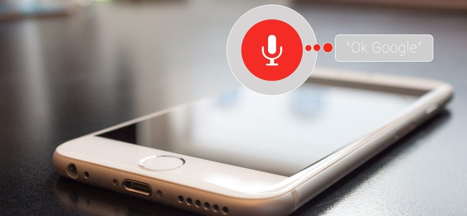 Voice Enables mobile application